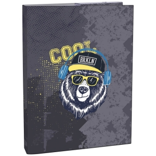 Box na zošity A4 STIL Cool Bear